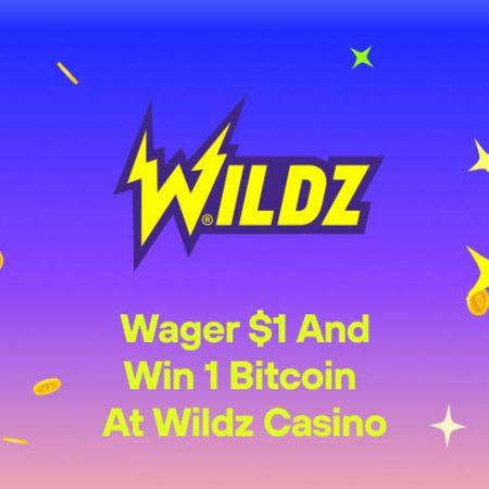 Wager $1 and Win 1 Bitcoin at Wildz Casino